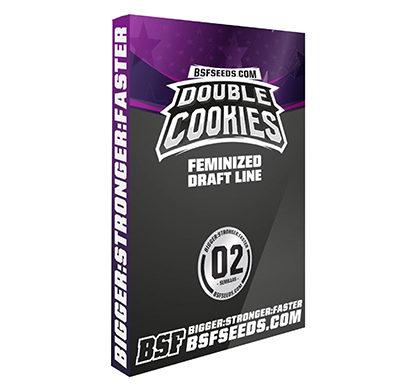 Semi femminizzati di cannabis Double Cookies