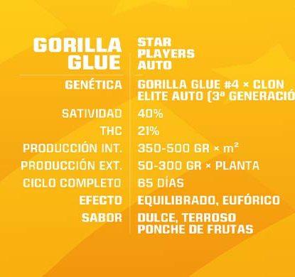 SensorySeeds Descrizione Semi Gorilla Glue Autofiorenti