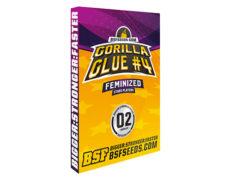 Pacchetto semi di cannabis femminizzati di Gorilla Glue