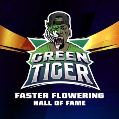 Logo dei semi fast flowering di Green Tiger