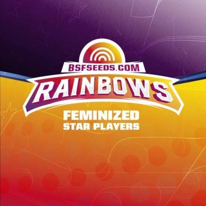 Logo dei semi femminizzati di Rainbows
