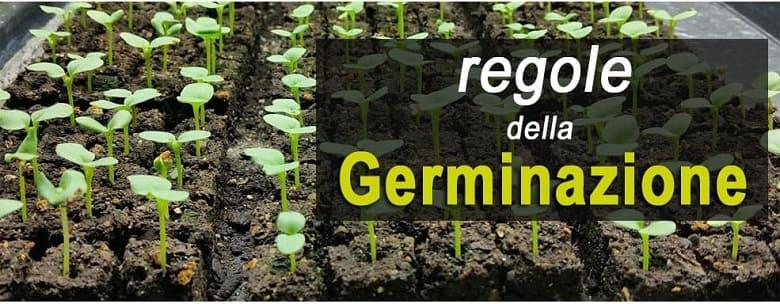 regole per i temi di germinazione nei semi