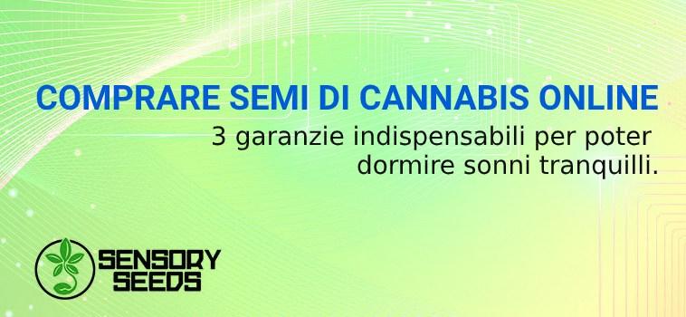 COMPRARE SEMI DI CANNABIS ONLINE SICURO