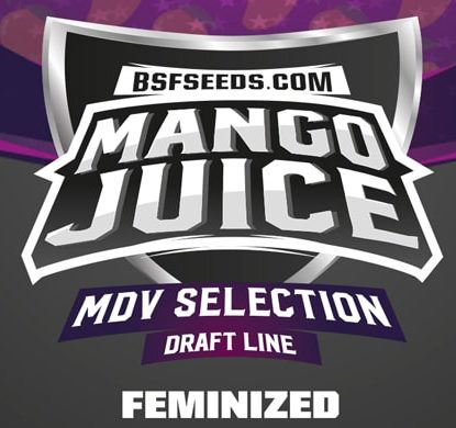 Logo Mango Juice semi di cannabis light
