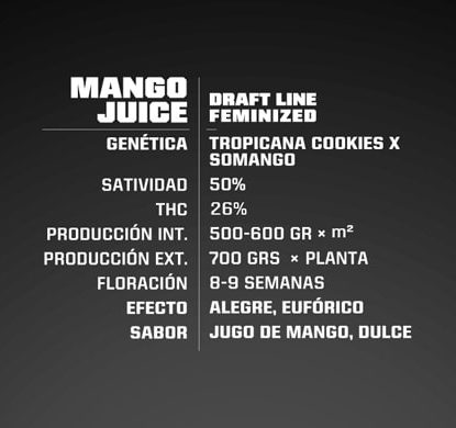 Mango Juice proprietà semi di marijuana