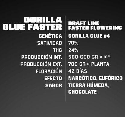 Proprietà semi Gorilla Glue Faster