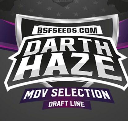 Logo dei semi femminizzati Darth Haze