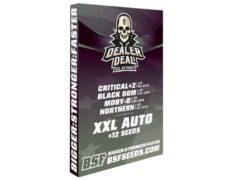 Kit di semi di marijuana Dealer Deal XXL Automix