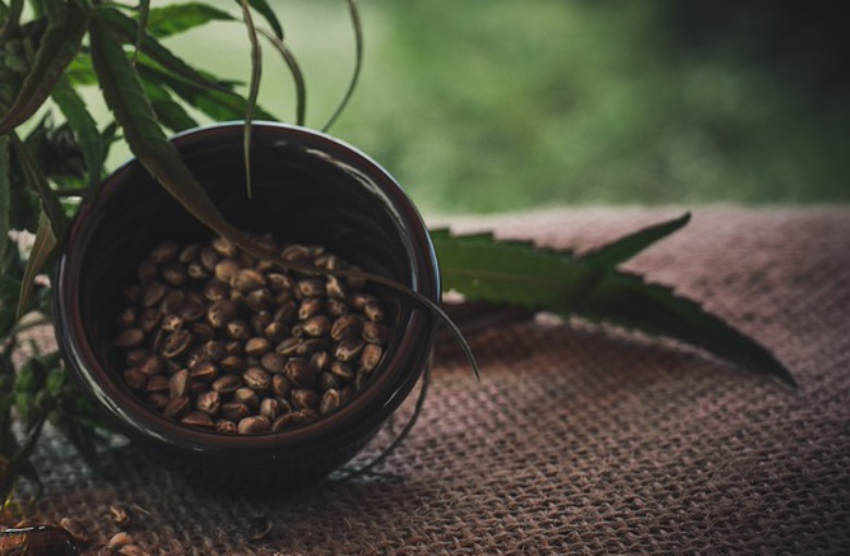 semi di cannabis femminizzati varietà