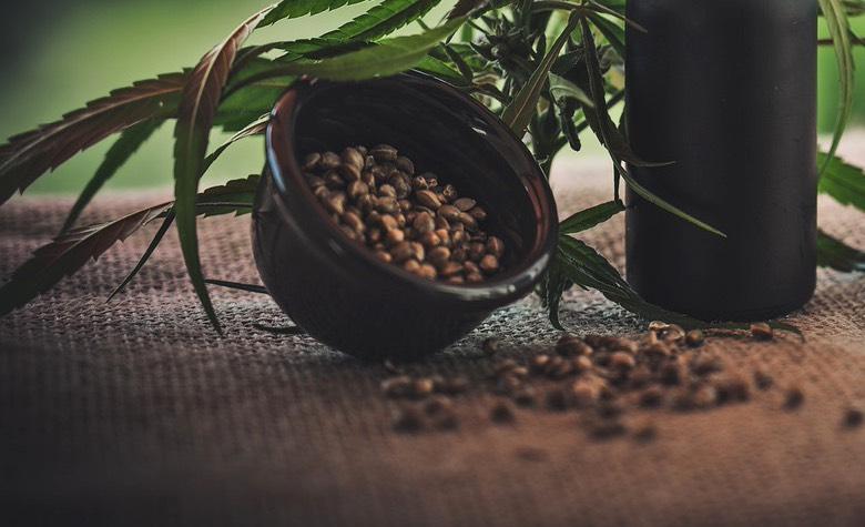come capire se i semi sono buoni semi di cannabis