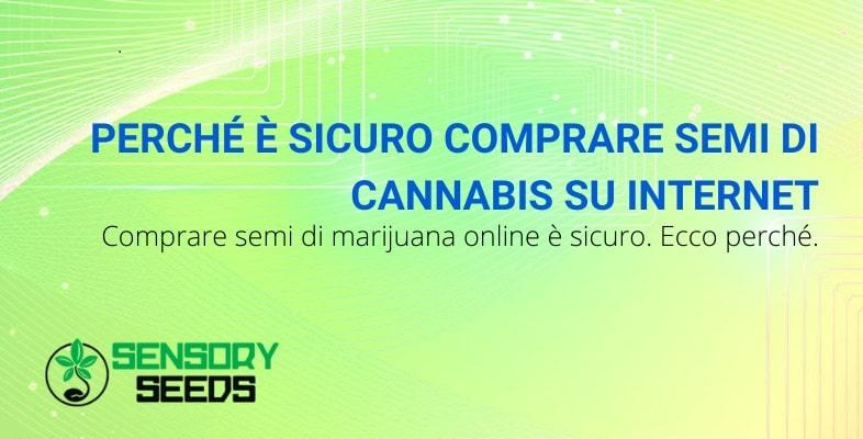 Scopri perché è sicuro comprare semi di cannabis online