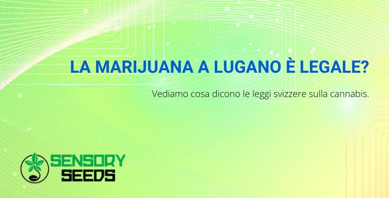 legge sulla Marijuana a Lugano