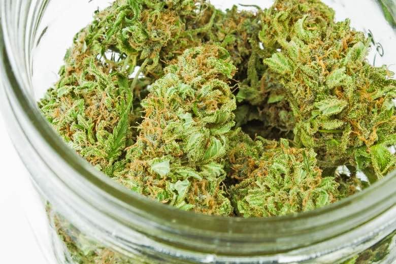fiori di cannabis Lemon thai