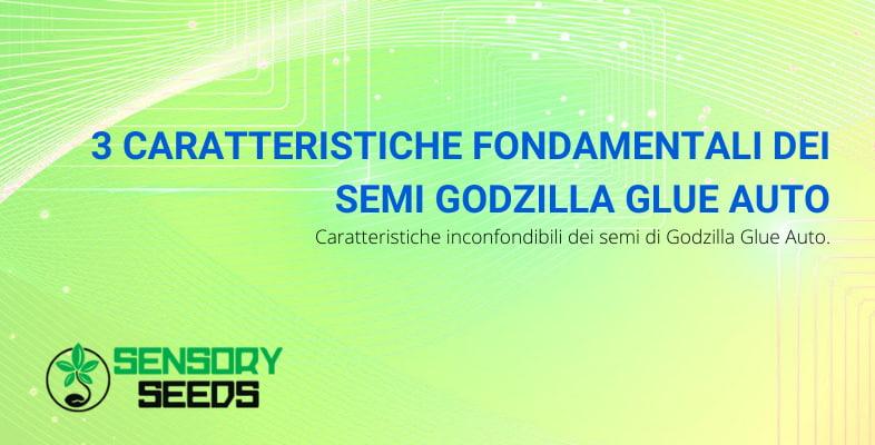 semi Godzilla glue auto caratteristiche