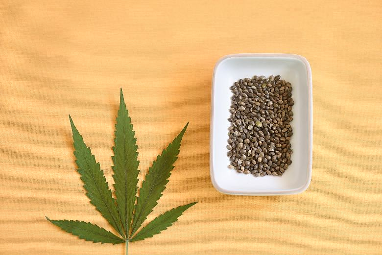 semi di cannabis autofiorenti di forma ovoidale