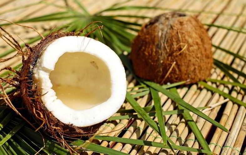 Fibra di cocco: come si usa?