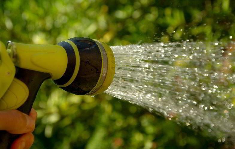 dosare l'acqua per la cannabis in fioritura