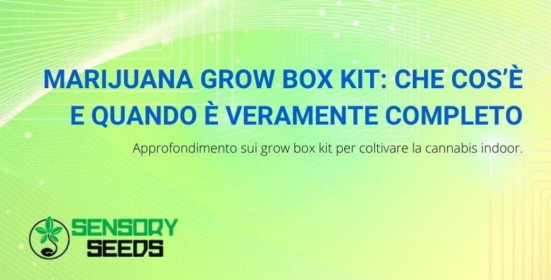 che cosa sono i marijuana grow box kit?